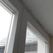 Schimmelbefall über Fenster