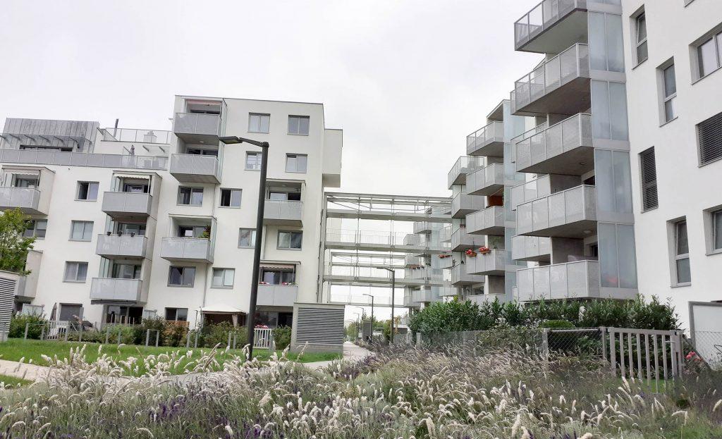 Florasdorf 1. Bauphase
